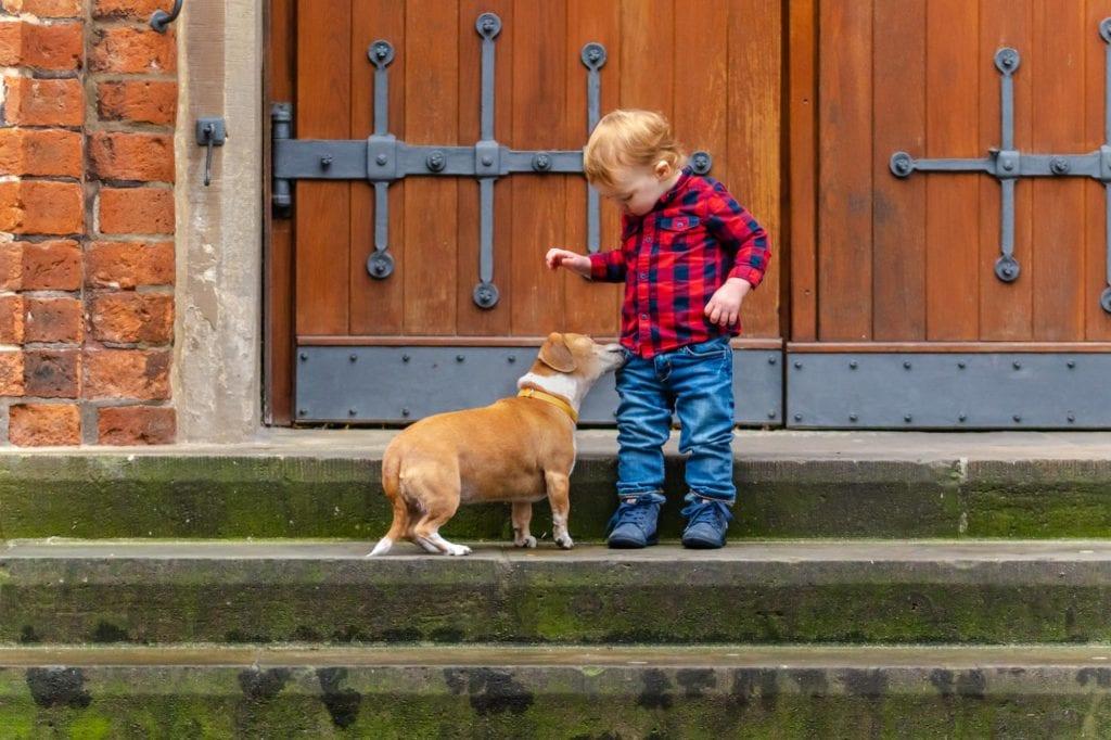 Familienfotoshooting Kleinkind mit Hund in Bremen